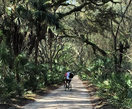 Biking on the Live Oak lined trails of Cumberland Island