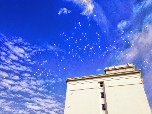 Pink balloons fill the sky for the pink ribbon golf event.